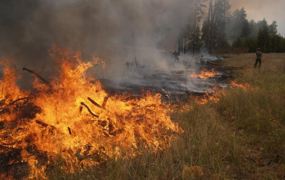В Україні підвищили штрафи за підпал сухої трави у 18 разів