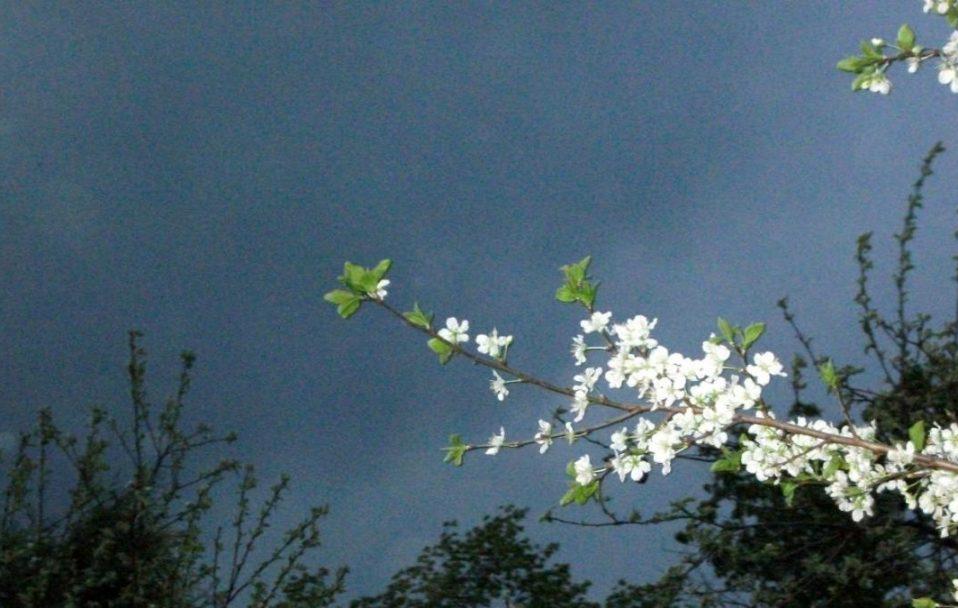 Синоптики дали прогноз погоди на травень