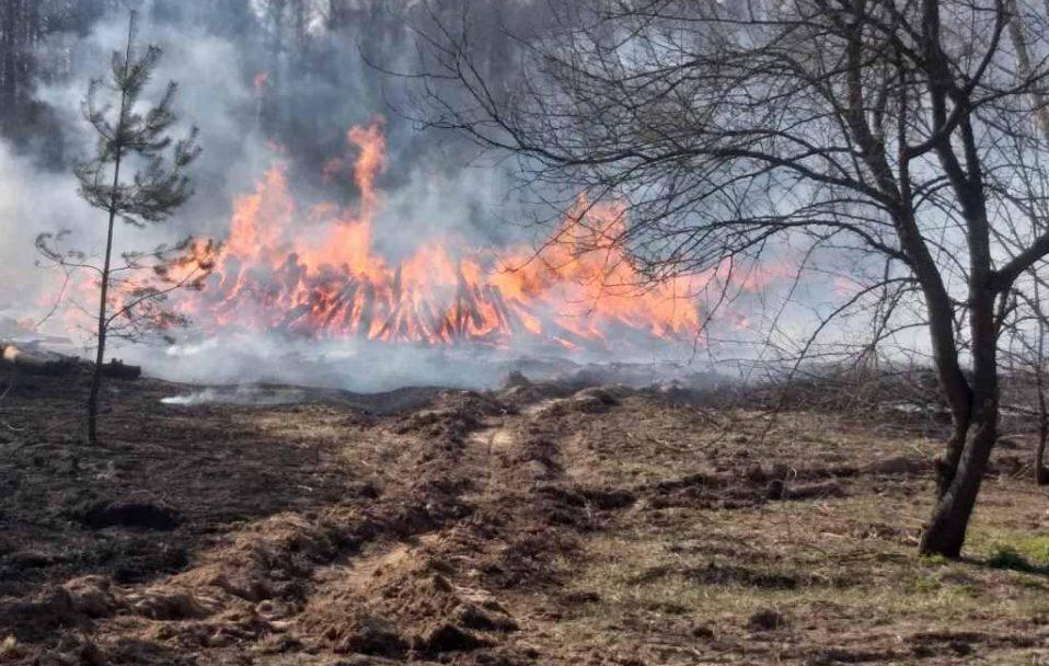 Показали моторошне відео наслідків пожеж під Чорнобилем. ВІДЕО