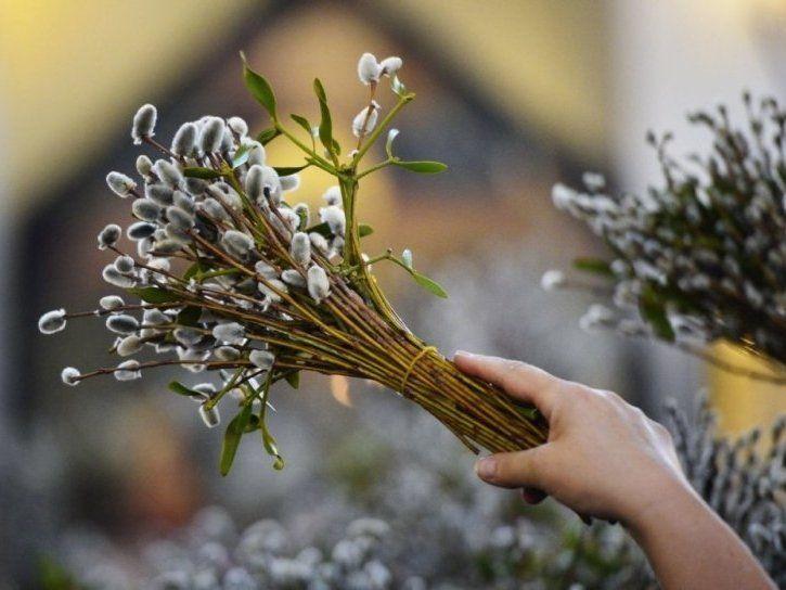 Як відзначатимуть Вербну неділю в храмах УПЦ МП на Волині