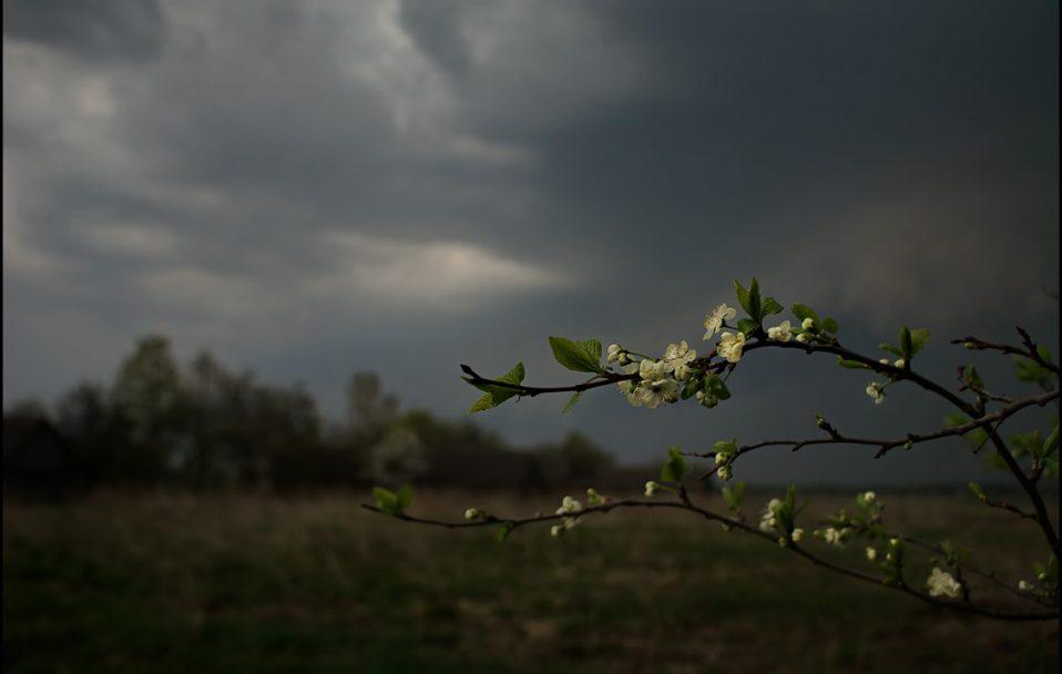 На Волині прогнозують грозу
