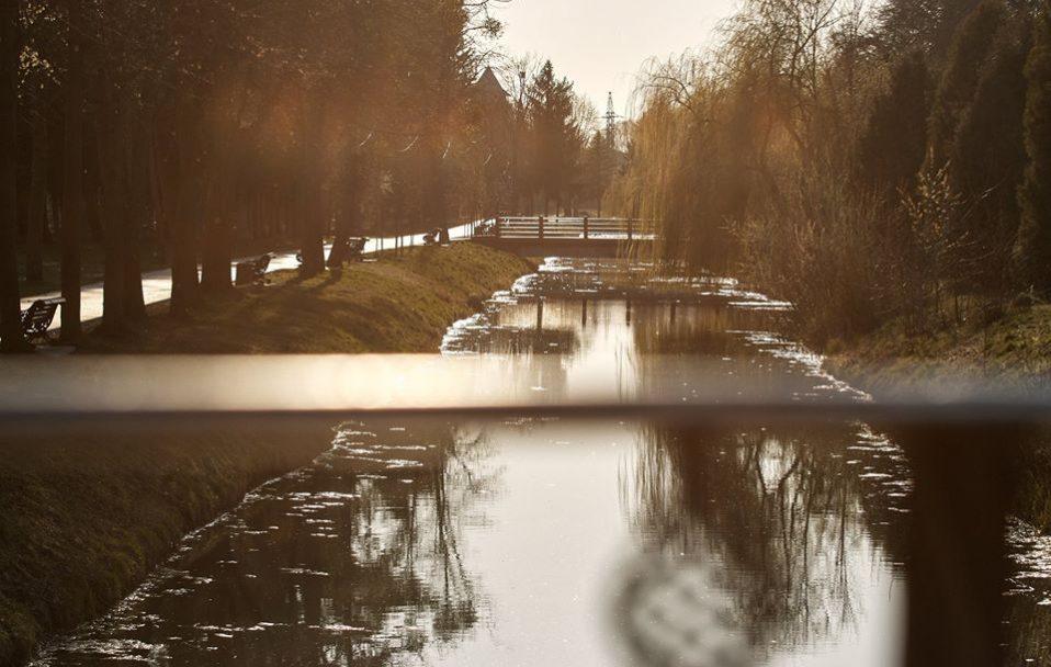 Карантин: фоторепортаж з луцького парку