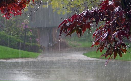 В Україні прогнозують сильні дощі, можливі підтоплення