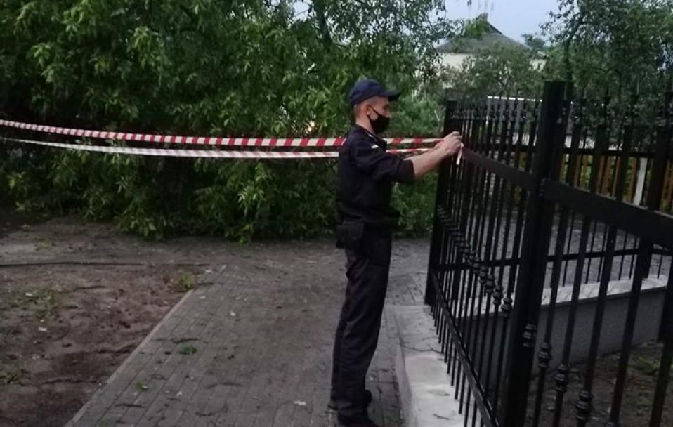 У Ківерцях буревій повалив дерево. ФОТО