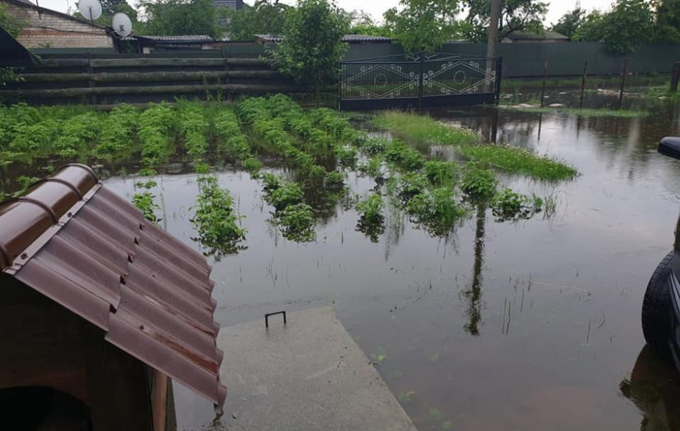 Наслідки зливи на Волині: частина врожаю – під водою. ФОТО