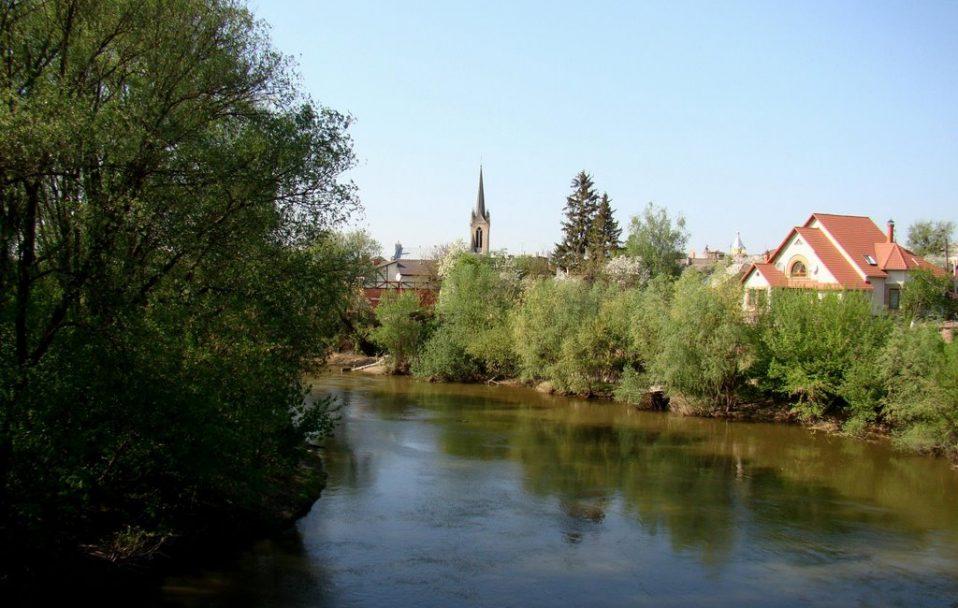 Лучанам не радять купатися в річці Стир – у воді виявили кишкову паличку