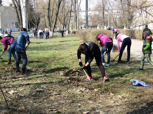 13 червня у Луцьку влаштовують загальноміську толоку