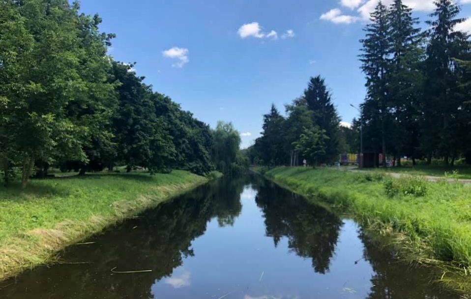У центральному парку Луцька чистять канали. ФОТО