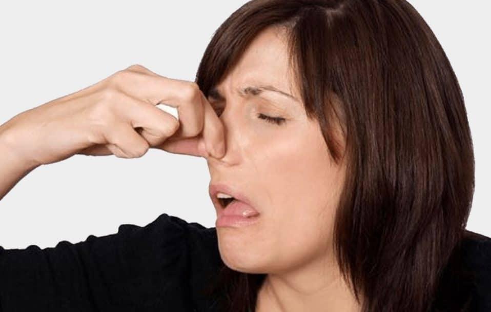 У Луцьку – знову смердить: знайшли ще дві причини неприємного запаху. ФОТО