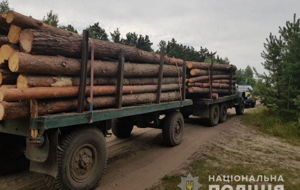 На Волині зловили ЗІЛ з краденою деревиною. ФОТО