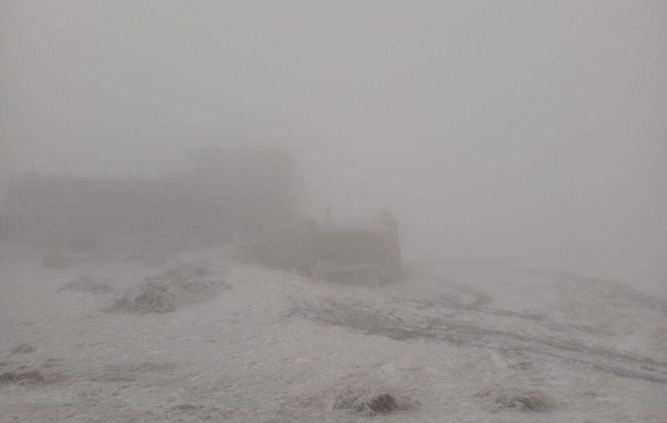В Карпатах випав сніг