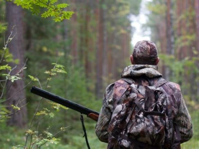 Шукав порятунку в людей: на Волині браконьєри застрелили лося. ФОТО