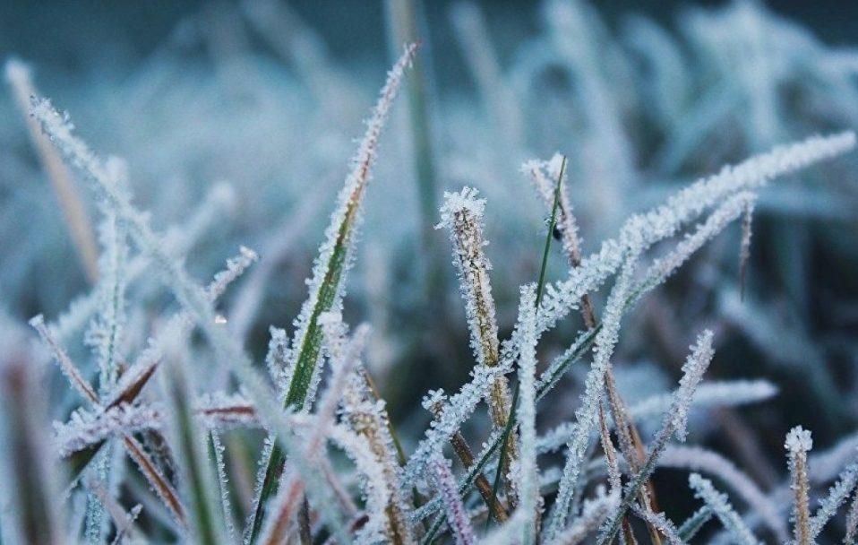 Мороз і пориви вітру: яку погоду прогнозують на Волині