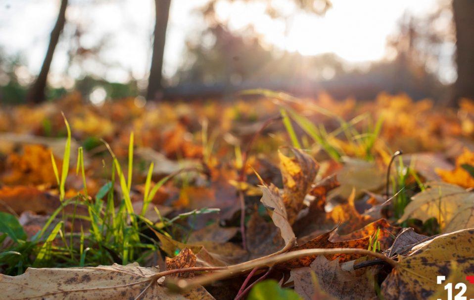 Осінь у луцькому парку: 30 яскравих кадрів
