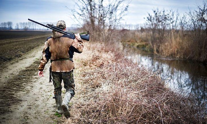 На Волині браконьєри вбили лося. ФОТО
