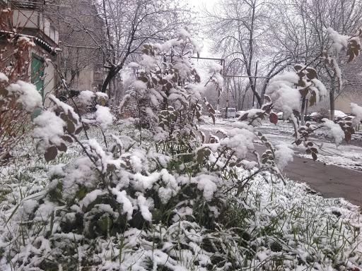 Якої погоди чекати волинянам у перший день зими