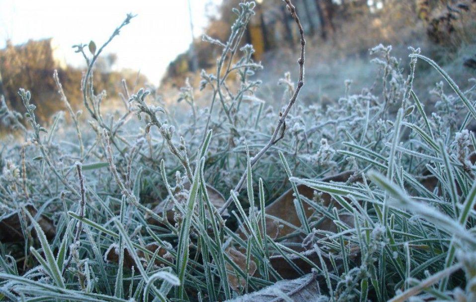 Якою буде погода на Волині у п'ятницю, 4 грудня