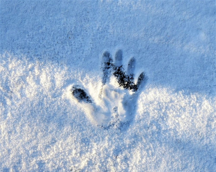 На Волині замерз чоловік