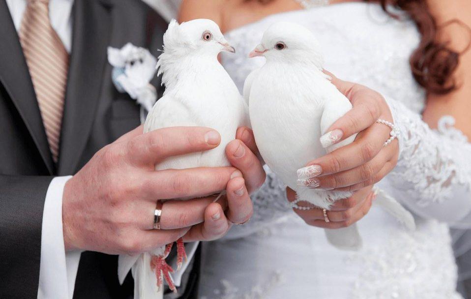 На Волині у день закоханих одружаться 18 пар