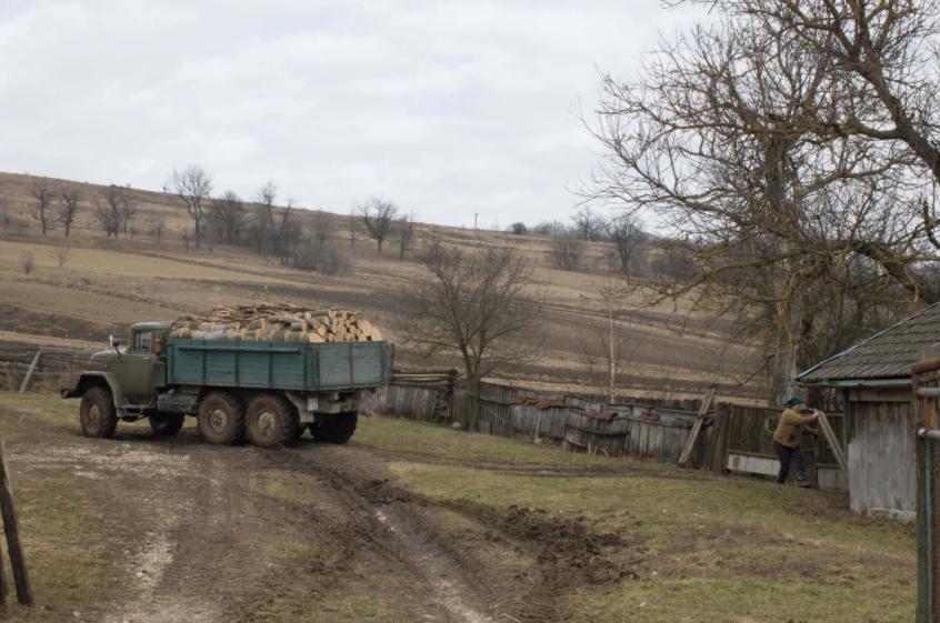 На Волині зловили крадія лісу. Вантажівку і деревину – вилучили