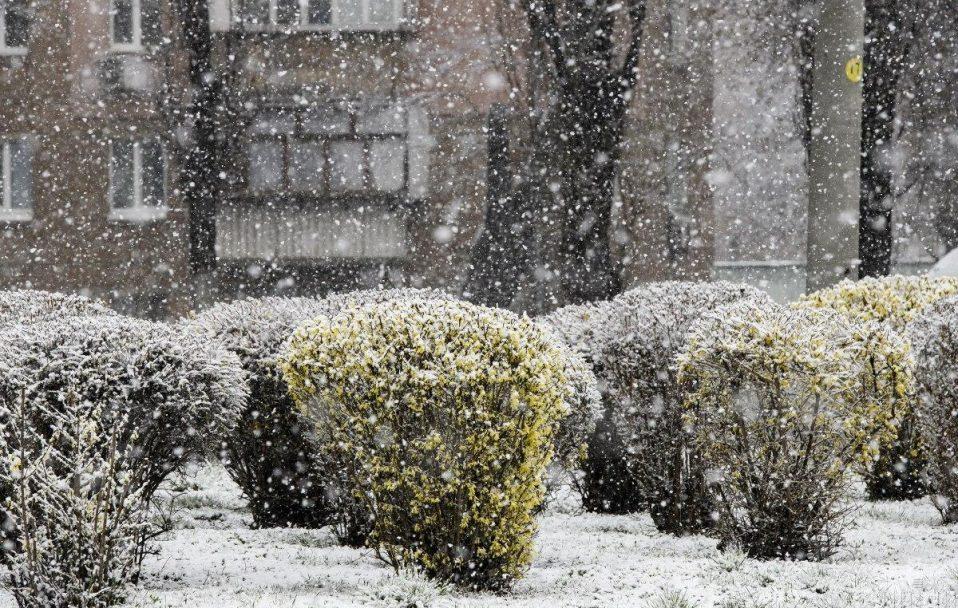 Зима повертається? Синоптики попереджають волинян про сніг і сильний вітер
