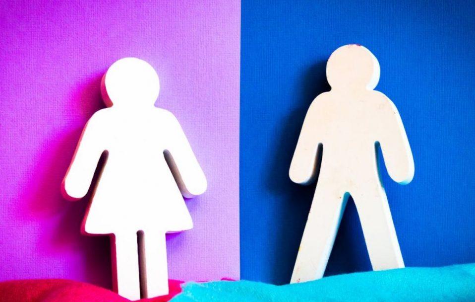 Луцька громада буде з гендерним портретом. Що це таке і на що може впливати?