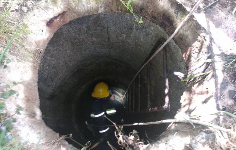 У Нововолинську двоє чоловіків втратили свідомість і впали у 4-метрову яму. ФОТО