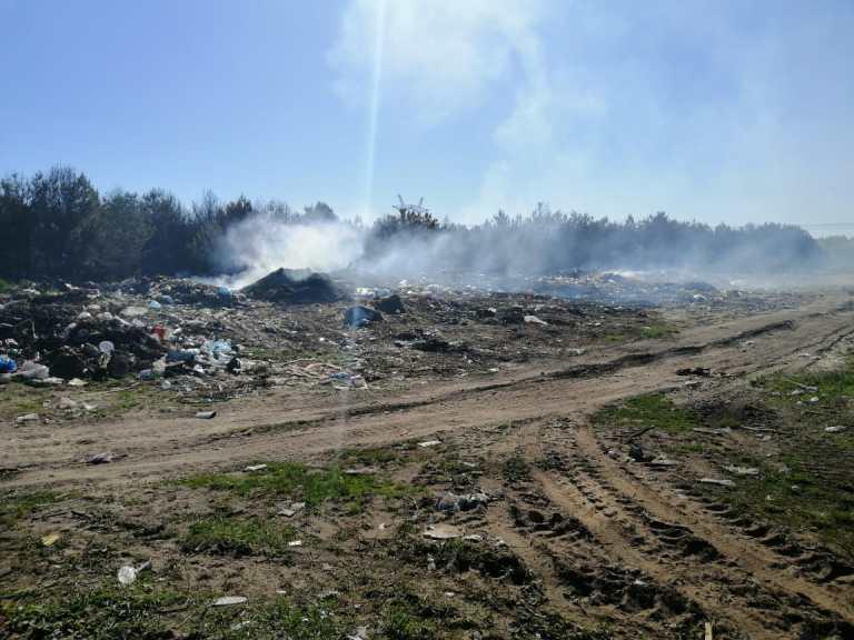 На Волині згоріло 5 гектарів лісу. ФОТО