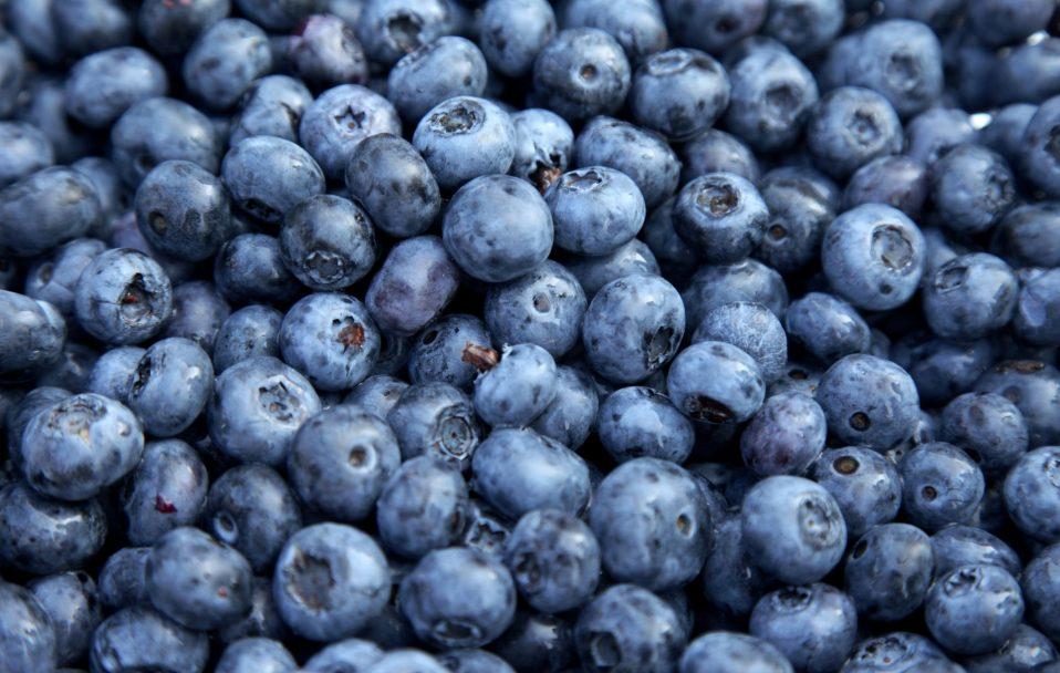 Сезон чорниці: по скільки у Луцьку продають ягоди? ВІДЕО