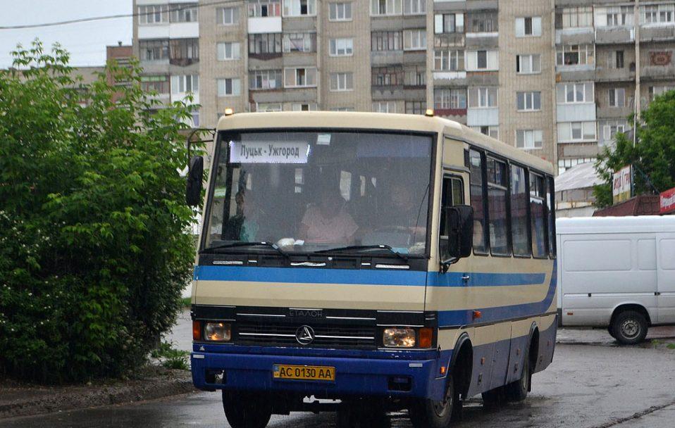 Сів у автобус Луцьк-Ужгород: затримали хлопця, який вбив людей заради цікавості