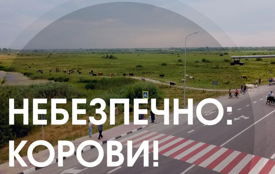 Небезпечне перехрестя біля Луцька: селяни просять зберегти їхні життя. ВІДЕО