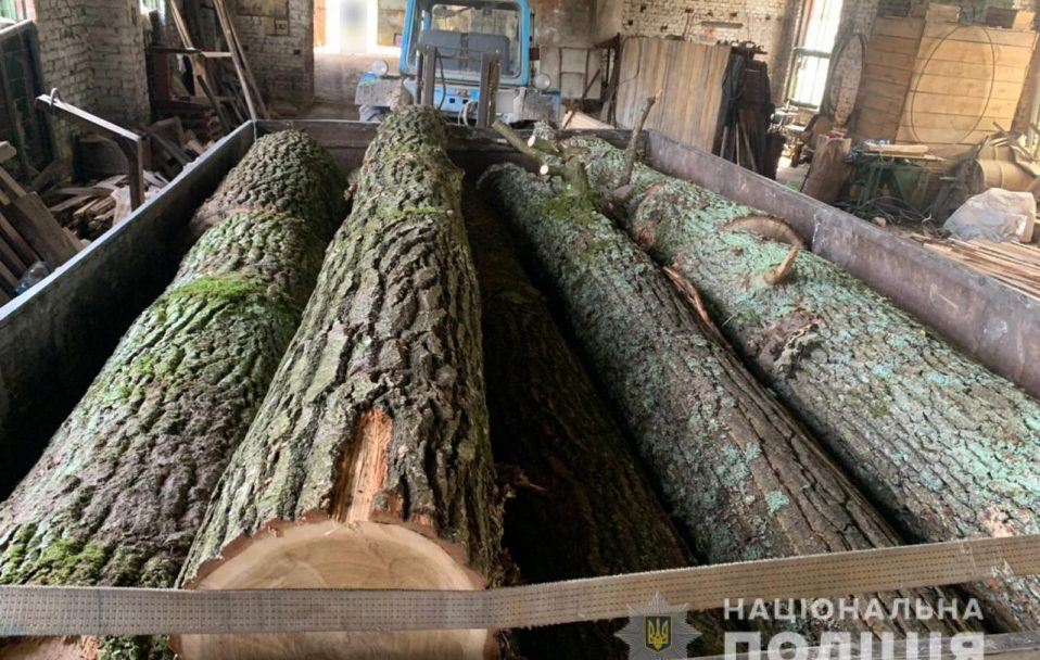 У Луцькому районі на пилорамі знайшли незаконну деревину. ФОТО
